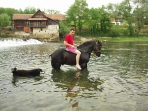 lipa_mlin